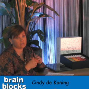 Online boek introductie Brainblocks.com